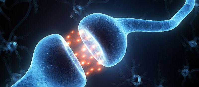 Depressão e a Falha nos neurotransmissores